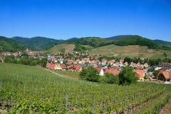 Het Gebied van de wijn in de Elzas Stock Foto's