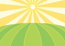 Het gebied van de zomer. Vector aardlandschap vector illustratie