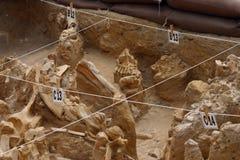 Het gebied van Digsite stock foto