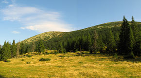 Het gebied van Gorgany in de Karpaten Royalty-vrije Stock Foto's