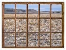 Het gebied van het graan na oogst royalty-vrije stock foto