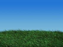 Het gebied van het gras in de lente stock illustratie