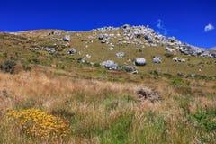 Het gebied van het gras met rots en bergachtergrond Stock Afbeelding