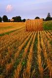 Het gebied van het landbouwbedrijf bij schemer Royalty-vrije Stock Fotografie