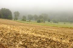 Het Gebied van het landbouwbedrijf in Mist Royalty-vrije Stock Afbeelding