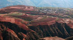 Het gebied van het terras in Azië Royalty-vrije Stock Afbeeldingen