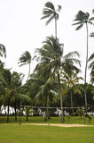Het gebied van het volleyball op de kust Royalty-vrije Stock Foto