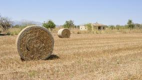 Het gebied van Mallorca in de zomer met strobalen stock afbeeldingen