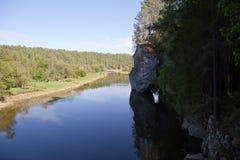 Het gebied van Sverdlovsk Rusland De Stromen van natuurreservaatherten Stock Afbeeldingen