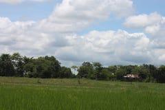 Het gebied van Thailand met blauw Royalty-vrije Stock Afbeelding