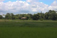 Het gebied van Thailand met blauw Stock Fotografie