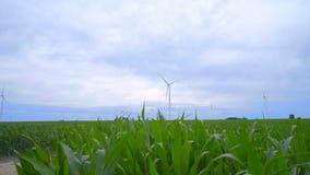 Het gebied van windturbines Panning op windturbines die zich op landbouwbedrijfgebied bevinden stock videobeelden