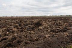 Het gebied, wordt akkerland voorbereid op het zaaien van gewassen Royalty-vrije Stock Foto