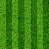 Het gebiedsachtergrond van het gras Stock Afbeeldingen