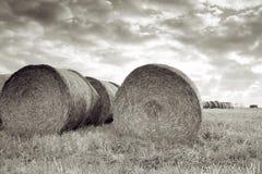 Het gebiedsbaal van de oogst van stro Royalty-vrije Stock Afbeelding
