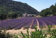 Het gebiedskerk van de lavendel Royalty-vrije Stock Afbeeldingen
