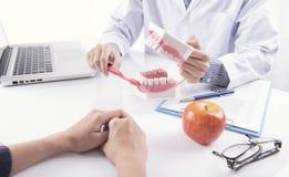 Het gebit van de borsteltanden van tandartsshowing cleaning of tandkaakmodel royalty-vrije stock foto's