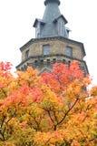 Het gebladerte van de herfst Royalty-vrije Stock Fotografie