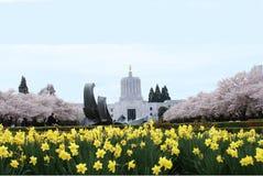 De Bouw van het Capitool van de Staat van Oregon in de Lente Stock Foto