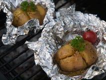 Het gebraden been van de Kip met gebraden gerechten en salade Royalty-vrije Stock Foto's