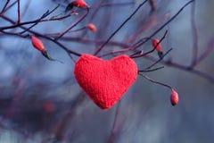 Het gebreide rode hart hangen onder de takken van rode bessen van w Stock Foto
