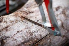 Het gebruiken van een metaalzaag om droog hout voor brandstof te snijden stock afbeelding