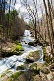 Het gebrul van In werking gestelde Waterval (Hogere Dalingen), Virginia, de V.S. royalty-vrije stock foto