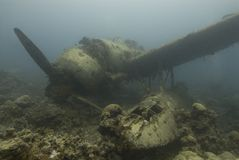 Het gedaalde Vliegtuig van de Oorlog Stock Afbeelding