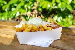 Het gedeelte verse gebraden de aardappelsstokken van België met inion, ketshup en verzadigt saus royalty-vrije stock afbeeldingen
