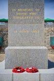 Het gedenkteken aan de Oorlog van de Falkland Eilanden van 1982 Stock Foto