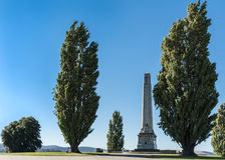 Het gedenkteken van de cenotaafoorlog tussen bomen in Hobart, Australië Royalty-vrije Stock Afbeeldingen