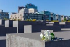 Het gedenkteken van de holocaust in Berlijn Stock Afbeeldingen