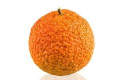 Het geheel kleurde helder mandarin of mandarijn Stock Afbeeldingen