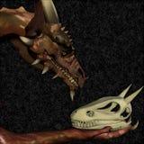 Het Gehucht van de draak stock afbeelding