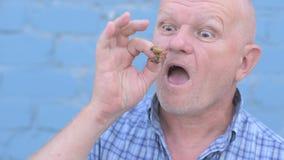 Het gekke Russische bejaarde met een geschoren hoofd houdt een insect Gryllotalpidae en eet ongedierteinsect stock videobeelden