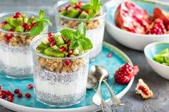 Het gelaagde parfait van de chiapudding met kiwifruit, granaatappel, granola en yoghurt stock fotografie