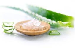 Het gelclose-up van aloëvera Gesneden aloeverablad en gel, natuurlijke organische cosmetische ingrediënten voor gevoelige huid, a royalty-vrije stock afbeelding