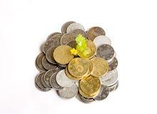 Het geld groeit Royalty-vrije Stock Afbeeldingen