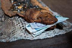 Het geld ligt in de mond van een droge boa Royalty-vrije Stock Afbeeldingen