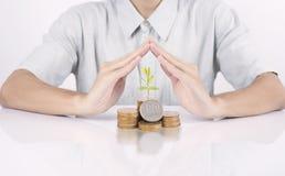 Het geld van de bedrijfshandbescherming met de groeifinanciën van het boomconcept royalty-vrije stock foto's