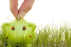 Het geld van de besparing op een piggy-bank Royalty-vrije Stock Foto