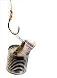 Het geld van de vangst Royalty-vrije Stock Afbeelding