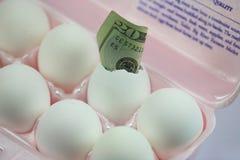 Het geld van het ei Stock Foto's