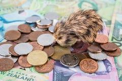 Het Geld van Nieuw Zeeland stock fotografie