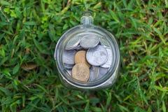 Het Geld van het Roepiemuntstuk in kruik op de Groene Achtergrond van de Grasaard Royalty-vrije Stock Afbeeldingen
