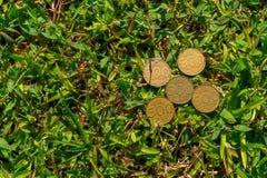 Het geld van het Roepiemuntstuk op groen gras Royalty-vrije Stock Foto