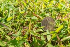 Het geld van het Roepiemuntstuk op groen gras Royalty-vrije Stock Fotografie