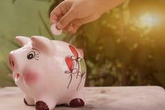 Het geld is wat alles maakt groeien royalty-vrije stock afbeelding