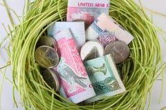 Het gelddirham van de V.A.E in een nest Stock Afbeelding