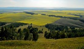 Het gele district van gebiedensharypovo onder het plaatsen zon stock afbeelding